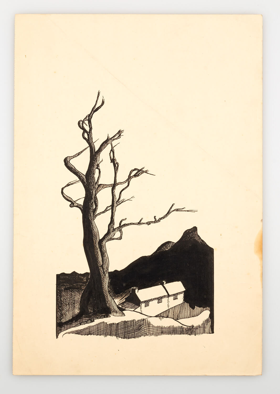 JB251 - Cornish Landscape - 1946 - 35.5 x 24.5 cm - Pen and ink
